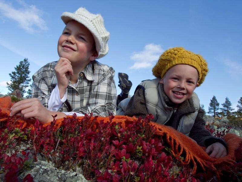 Lapset nauttivat kesäpäivästä Lapin luonnossa.